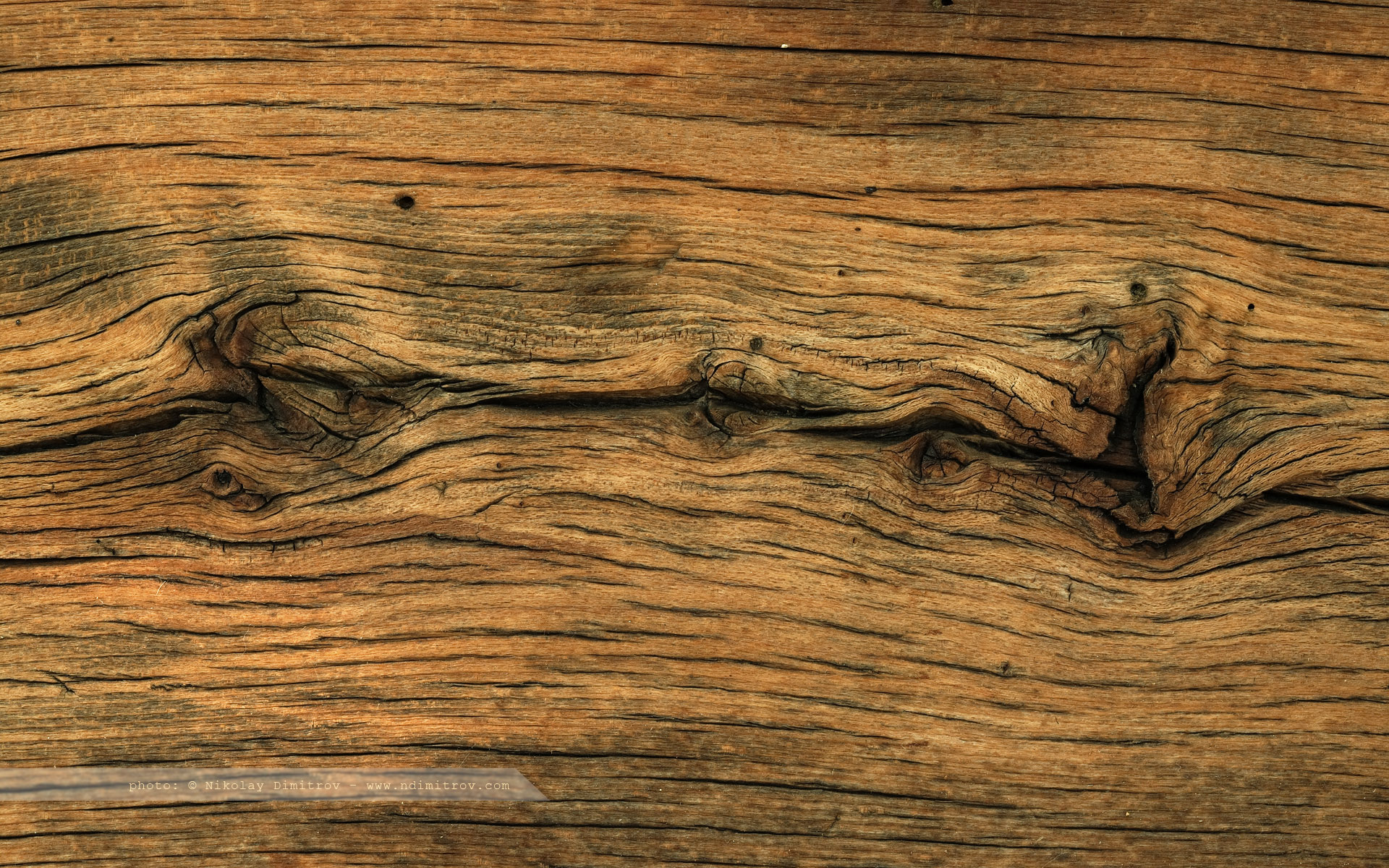 Old Oak Wood ~ Free wallpapers